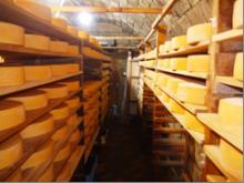 $地域価値創造コンサルタント 須田憲和-協働学舎 チーズ